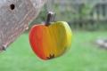 Apfel klein, mit Aufhänger