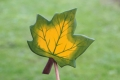 Ahornblatt groß grün, mit Stock