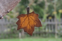 Ahornblatt klein braun, mit Aufhänger