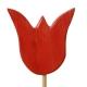 Tulpe hellrot, mit Stock